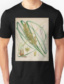 The botany of the Antarctic voyage of H M  discovery ships Erebus and Terror in the Years 1839 1843 Joseph Dalton Hooker V1 042 T-Shirt