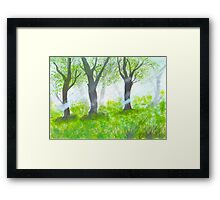 Forest with sunlight.  Framed Print