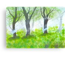 Forest with sunlight.  Canvas Print