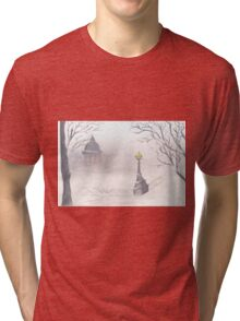 Beautiful winter scenery Tri-blend T-Shirt