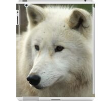 Artic Wolf  iPad Case/Skin