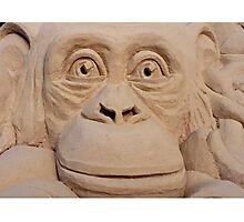 Chimpanzee Sand Sculpture Photographic Print