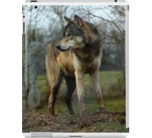 Grey Wolf Standing iPad Case/Skin