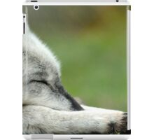 Sleeping Grey Wolf iPad Case/Skin
