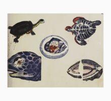 Naturgeschichte in Bildern mit erläuterndem Text E Strack 1820 Lief 3 Reptiles 006 Kids Tee