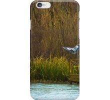 Blue Heron in Flight iPhone Case/Skin