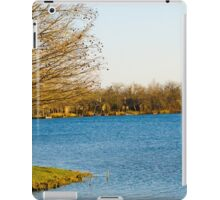 Island Trees on Water iPad Case/Skin