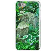 Housewarming Greeting - Fairy Landscape iPhone Case/Skin