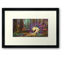 Spirit Bear Framed Print