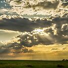Sunshine Beams of Gold Raining Down by Bo Insogna