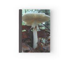 Tiny Toad 'Neath Parasol Mushroom Hardcover Journal