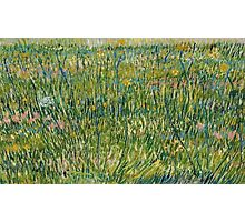 patch of grass by vincent van gogh Photographic Print