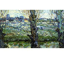 blossoming trees by vincent van gogh Photographic Print