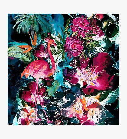 Tropical Night Photographic Print