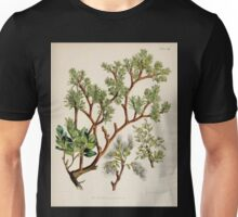 The botany of the Antarctic voyage of H M  discovery ships Erebus and Terror in the Years 1839 1843 Joseph Dalton Hooker V1 088 Unisex T-Shirt
