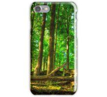 Dundas Valley Fallen Trees iPhone Case/Skin