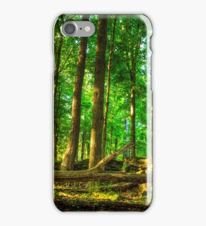 Dundas Valley Fallen Trees iPhone Case/Skin