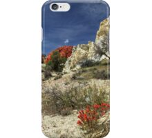 Red Flowers At Red Rock Canyon iPhone Case/Skin