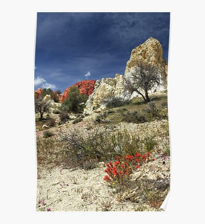 Red Flowers At Red Rock Canyon Poster