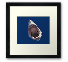 Shark Attack! Framed Print