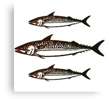 3 Fish Angler Print Canvas Print