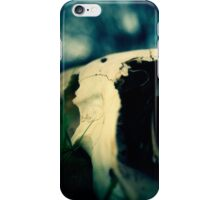 Left Behind - 2 iPhone Case/Skin