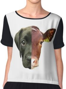 Animal Equality- dog and cow (sorry for the bad quality) Chiffon Top