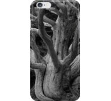 Point Lobos IV BW iPhone Case/Skin