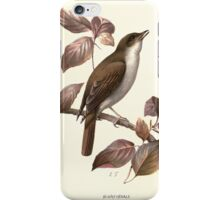 Familiar wild birds Swaysland 1883 V1 087 Nightingale iPhone Case/Skin