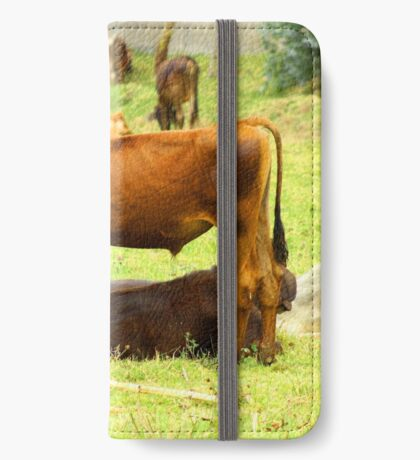 Calves in a Pasture iPhone Wallet/Case/Skin