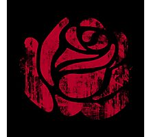red rose stamp Photographic Print