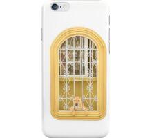 Dog Watching the Camera through Windows House iPhone Case/Skin