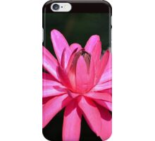 Large Pink Water Lily iPhone Case/Skin