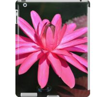 Large Pink Water Lily iPad Case/Skin