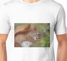 Red squirrel snacking Unisex T-Shirt