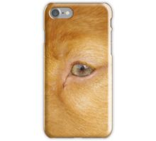 Toller Face iPhone Case/Skin