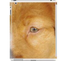 Toller Face iPad Case/Skin