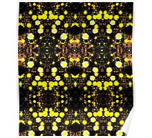 Daisies Polarized in Symmetry Poster
