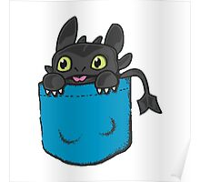 Toothless Frocket Poster