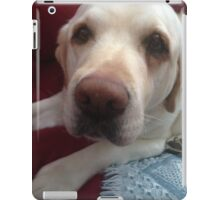 Grady the lab iPad Case/Skin
