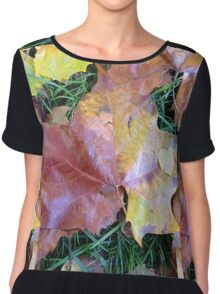 Nature Heals  Chiffon Top