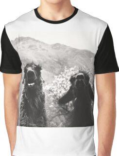 Best Llama Friends Graphic T-Shirt