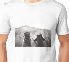 Best Llama Friends Unisex T-Shirt