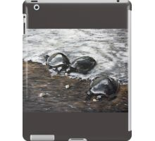 Turtles Feeding iPad Case/Skin