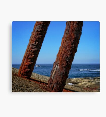 Trip to Wollongong Harbour (4) Canvas Print