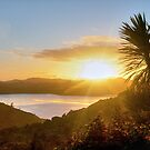 The start of a golden day.........Bay of Islands. by Roy  Massicks