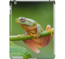 The dainty green tree frog  iPad Case/Skin