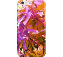 Floss Tree iPhone Case/Skin