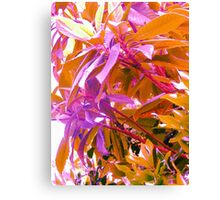 Floss Tree Canvas Print