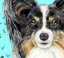 Papillon - Continental Toy Spaniel by didielicious